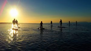 Group paddle-boarding at dusk.