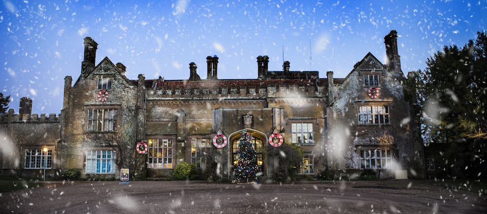 Marwell In The Snow