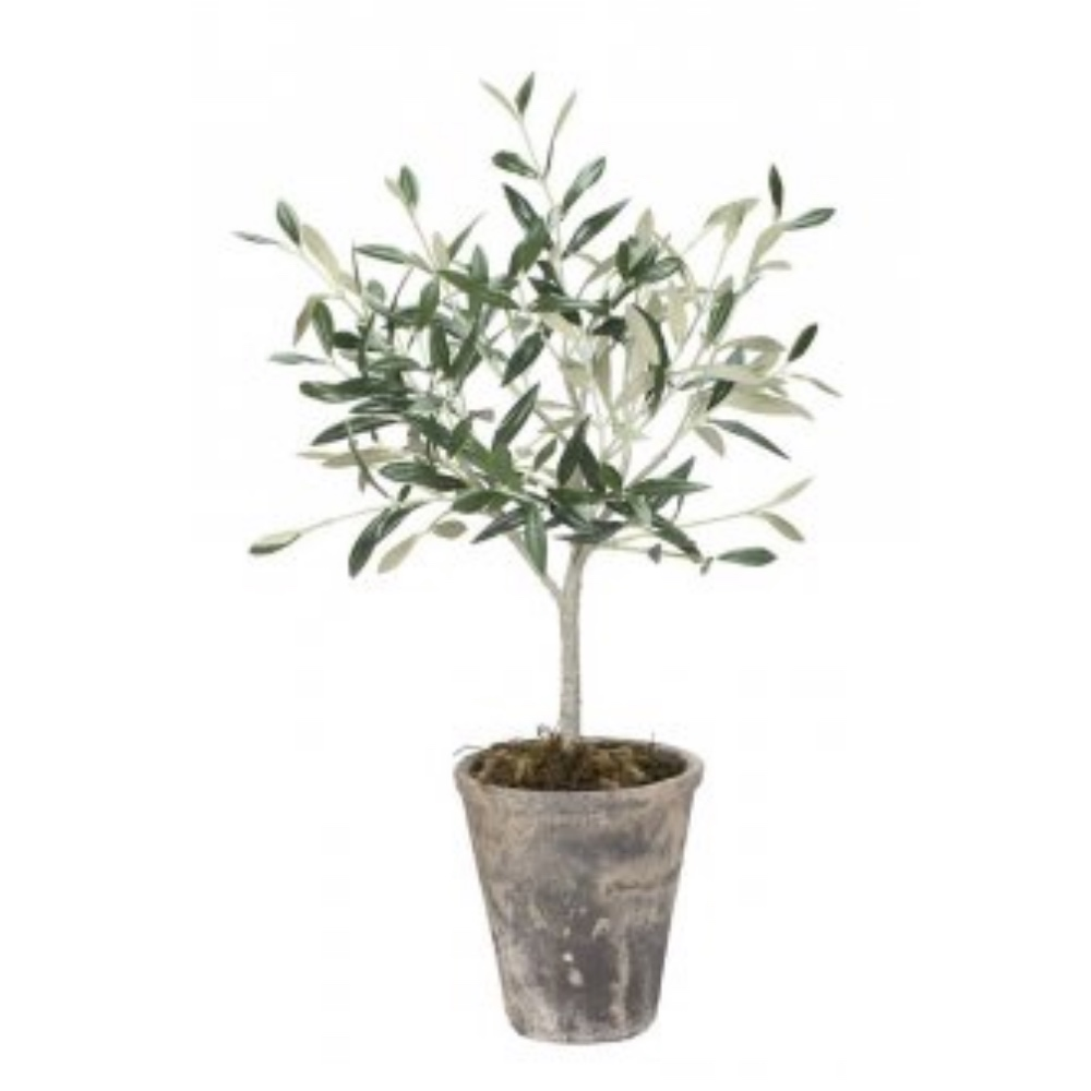Artificial Plant Olive Tree No64 Biscuit house