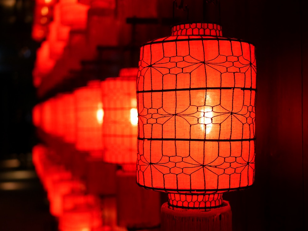 Chinese Lantern Electric Woods