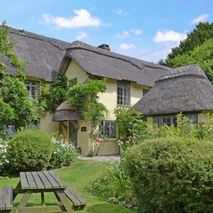 new forest cottages 4