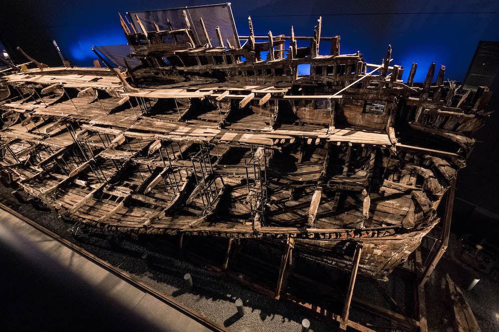 Mary Rose Photo by Michael Brace