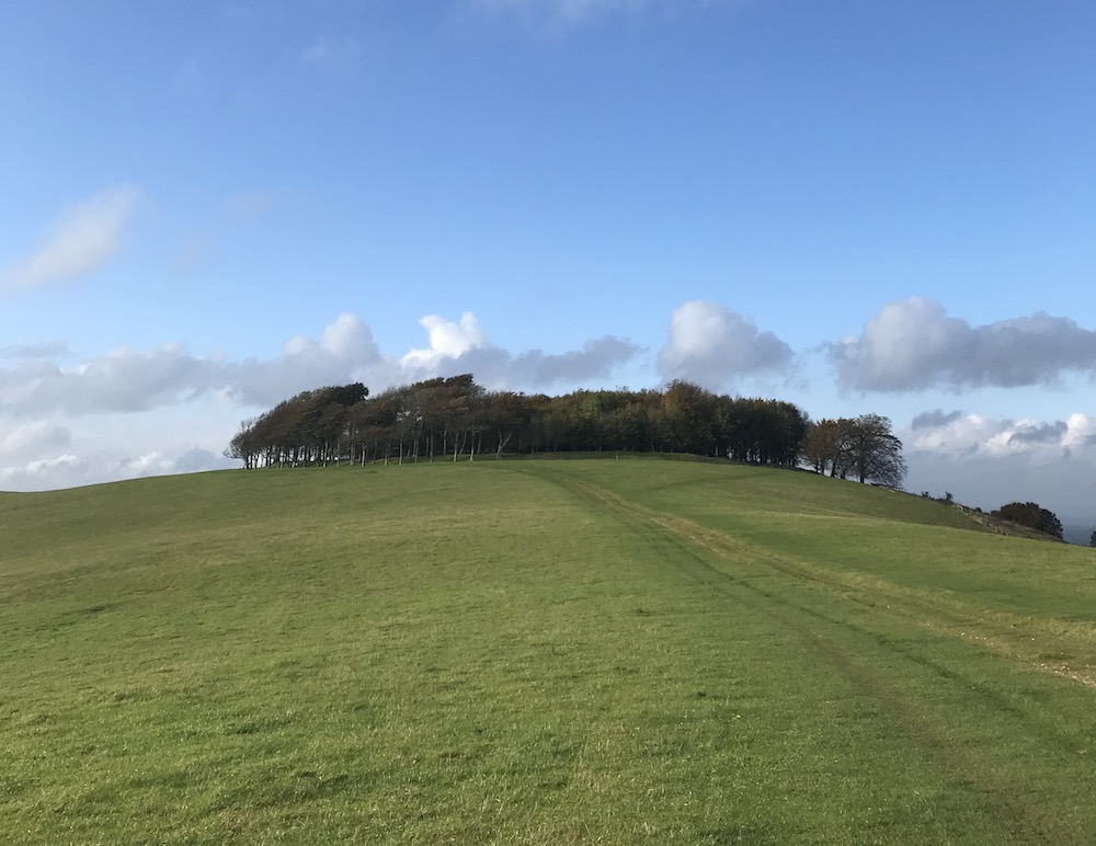 South Downs Sussex