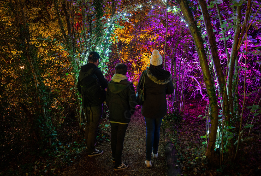 Robin Hill Country Park What's On October Autumn Days Evenings Isle of Wight events